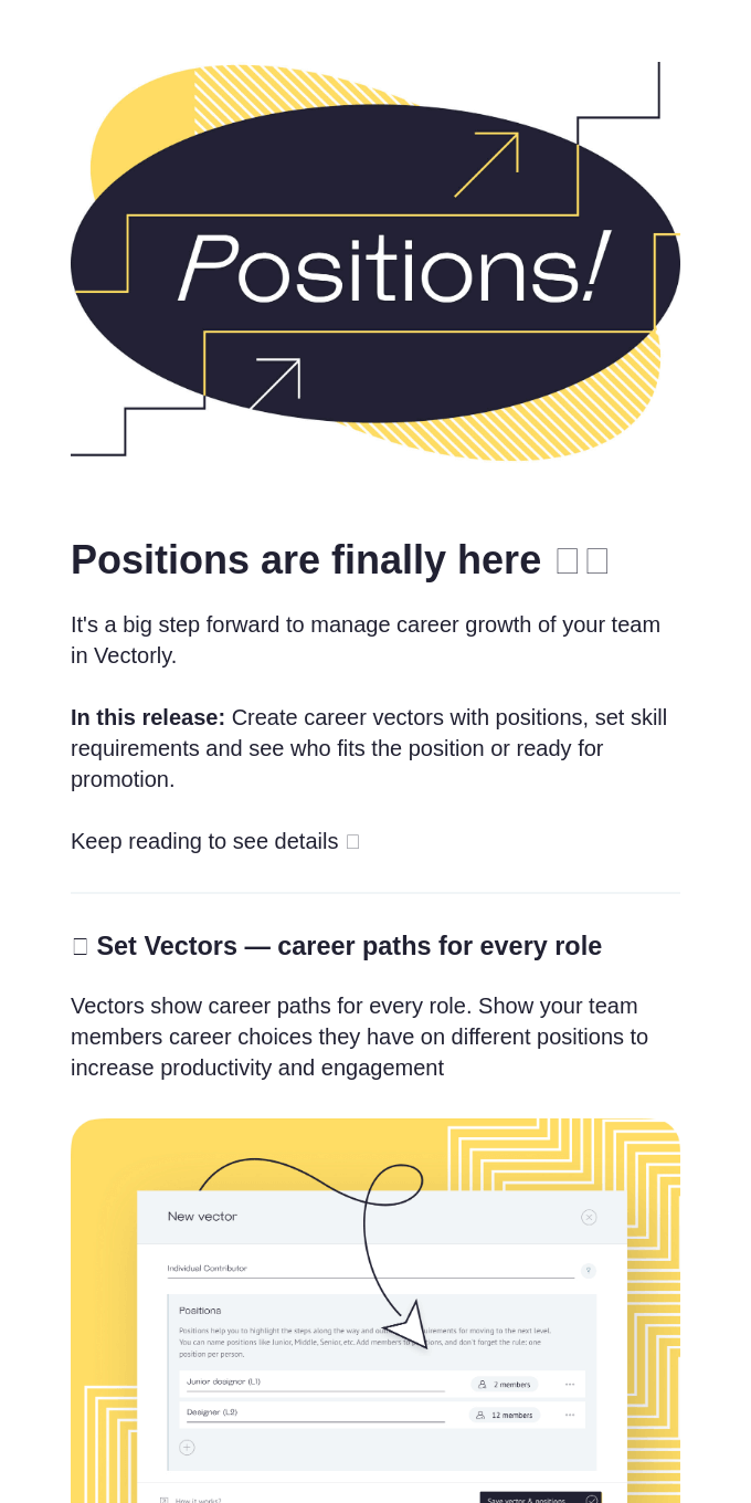 🧩 Who is ready for promotion in your team? Vectorly №6 Newsletter has the answer