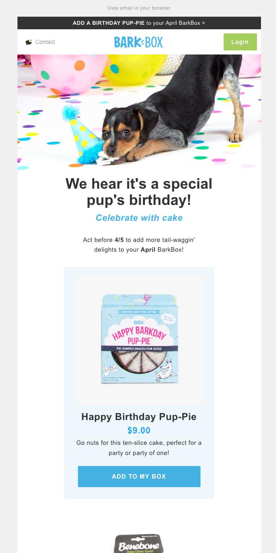 BarkBox ✅ Birthday BarkBox? ✅