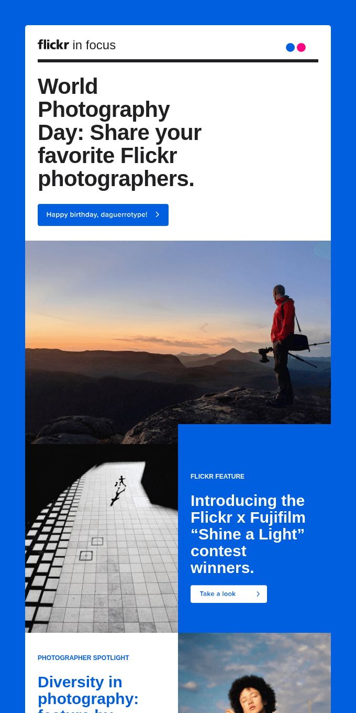 Flickr In Focus | August 2020