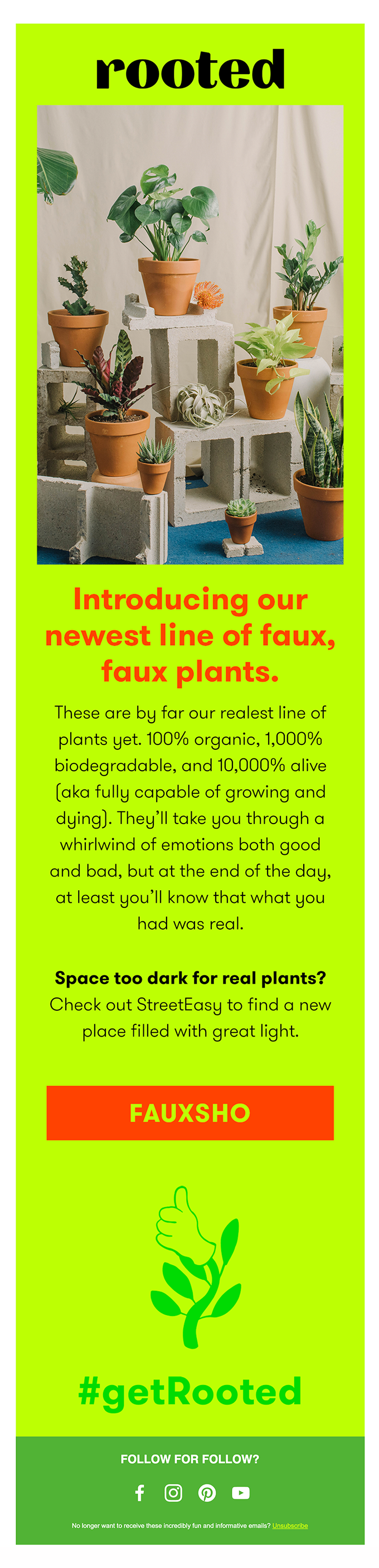 Introducing our NEW line of faux faux plants 🌱