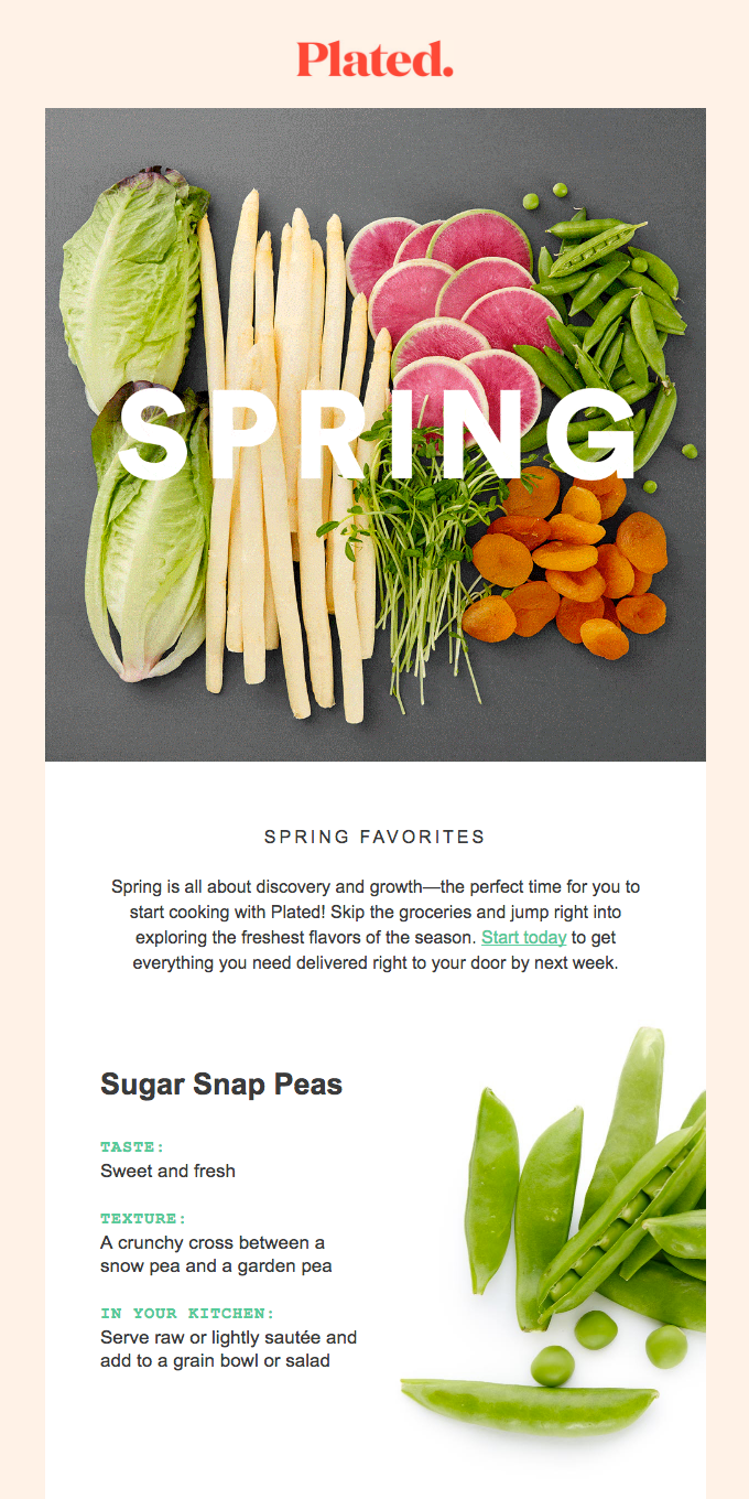 Meet your new spring favorites 🌱