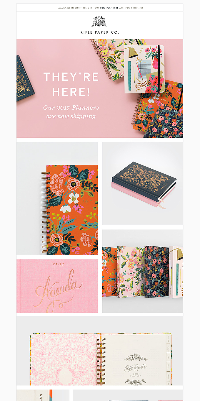 They're here! Our 2017 Planners are now shipping.